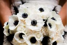 4 daughters breaking the bank :) / Wedding ideas / by Beth Forst