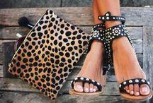 Cheetah  / by Jamie Skolnik
