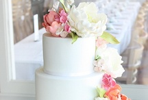 Wedding / by Bronte Baird