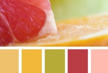 Color Paletts / by Shannon Valentine