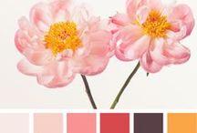 Color Combination Idea's / by Patchwork Jane's