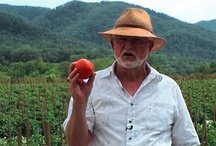 Know Your Food / by Panera Bread