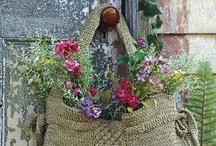 garden / by Debbie Storey