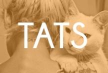 TATS / by Sharon Beesley