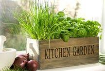 Gardening / by Kristina Larson