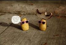 Fun(ny) Stuff / Random things we like or find funny... / by Famous Idaho® Potatoes