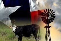 Texas, My Texas / by Patricia Grupe