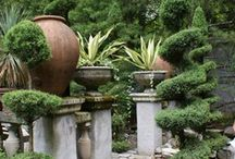 Topiary Gardens / Topiary fanatics welcome! / by Walpole Outdoors