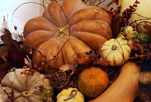 Autumnal... / My favorite time of year....I love the colors  / by JoDina .