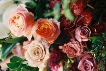 Floral arrangements / Creative ways to arrange flowers... these photos inspire me... / by JoDina .
