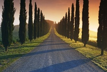 An Italian Affair / The love affair with my Italian heritage...  / by JoDina .