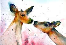 Deer / by Michelle Elson
