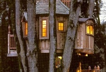 Tree houses cabins & barns / by Margaret Mosher