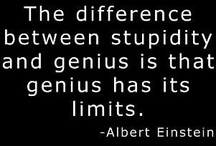 Einstein has left the building. / Stuff that's just stupid and beyond. / by Dorothy