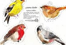 Science-Animals/Birds/Habitats/Food Chain / by Cindy Steele