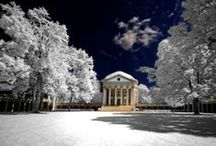 University of Virginia, U.S.A. / by Fabio K.