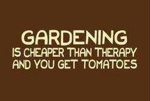 gardening / gardens, fountains, landscape, homesteading / by Nancy Clark