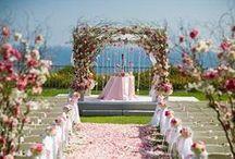 Chuppah Love  / by Carmen Weddings