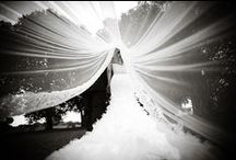 Photography Love / Some of my favorite wedding day photos / by Shanna M