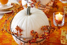fall / fall & autumn holiday - decorating, DIY & craft ideas / by Gina @ Shabby Creek Cottage