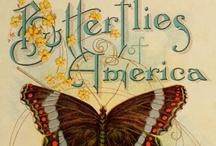 PreTTy BiRds & BuTTerFLiEs / by Annette Tarter