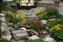 Landscaping Advice / by Tomlinson Bomberger Lawn Care, Landscape, & Pest Control