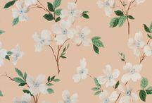 pattern / by Maia McDonald Smith