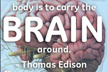 Brain food / by Jennifer Bongar