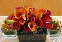 Ingela Floral: Preferred Vendor / http://www.ingelafloral.com / by Indian Weddings & California Bride