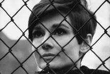 Audrey Hepburn / by Laura Flaherty
