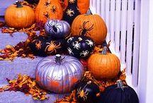Fall favorites / by Amanda Wilson