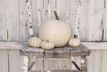 fall decorating  / by Whitney Lash