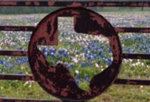 Home Sweet Texas Home / by Angela Chadwick