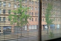 Window Treatments For Toledo Area Offices / Some examples of window treatments we've done for offices in the Toledo Ohio area. NW Ohio and SE Michigan. / by Window Treatments