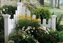 Gardening / by Tammy Fries