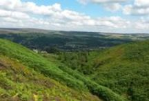 Beautiful Yorkshire / by Winston Solicitors LLP