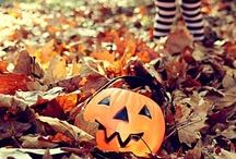 Autumn & Halloween / by MaryEllen
