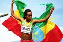 Sports / by Tigrai Online
