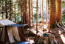 ☀ lets go campin ! ☁ / by ℂlaire Winchester