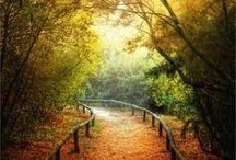 Beautifil Nature / by Jen Hanson