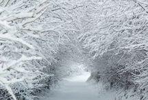 winter / by B.B.