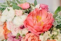 My Wedding / September wedding / by Jody Micheff