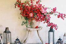FLOWER POWER / by althea siegfried