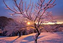 A Beautiful Snow / by George Terry Mckinney