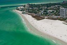 Florida coast / by George Terry Mckinney