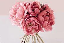 Flower Arrangements / by Sincerity Bridal
