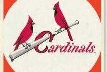 Cardinal Nation / by Carol Wright Miller