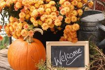Fall, Autumn, & October / by Meredith Jernigan