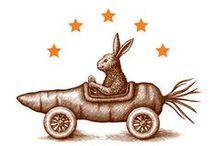 Mr.Bunny...  / by Suzy Weatherby