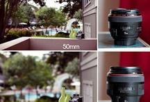 a Camera is for... / by Tara Nixon Cox